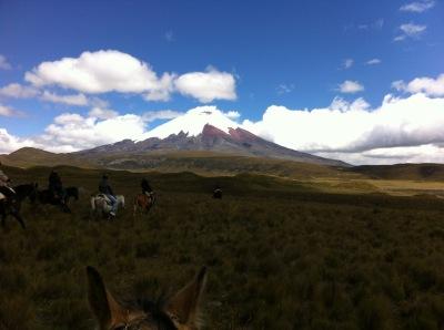 Cotopaxi horse ride